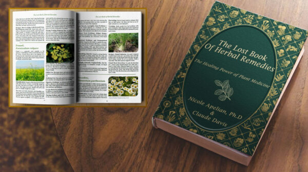 lost book of remedies download