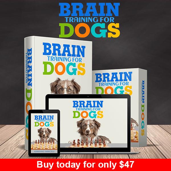 brain training dogs reviews